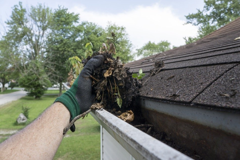 How to Clean and Maintain Your Gutters