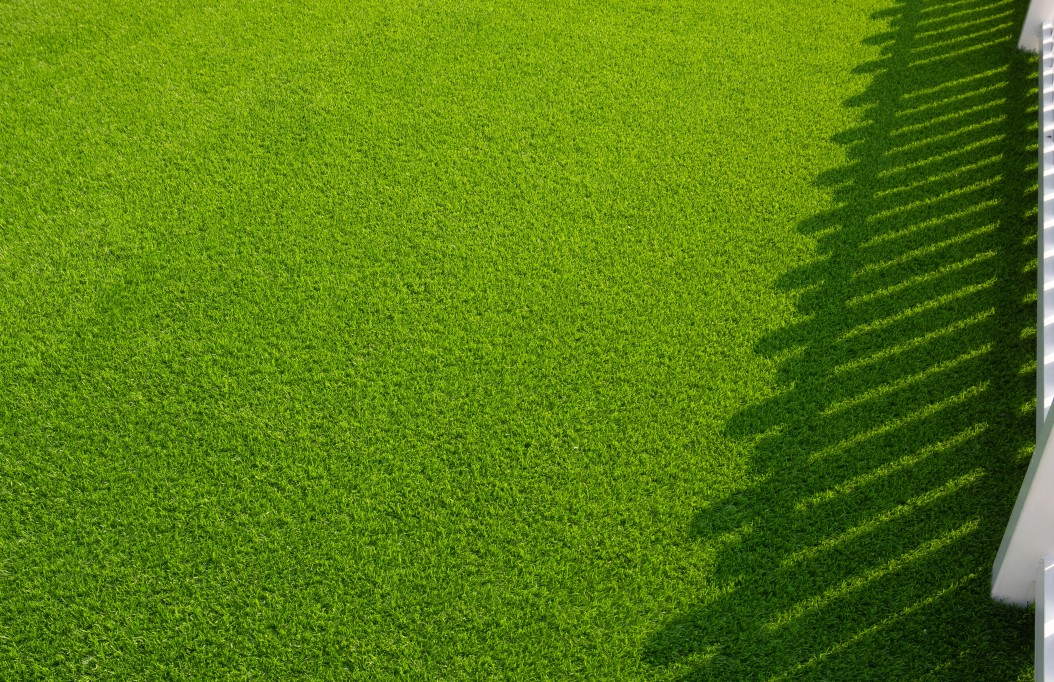 Should You Install Artificial Grass?