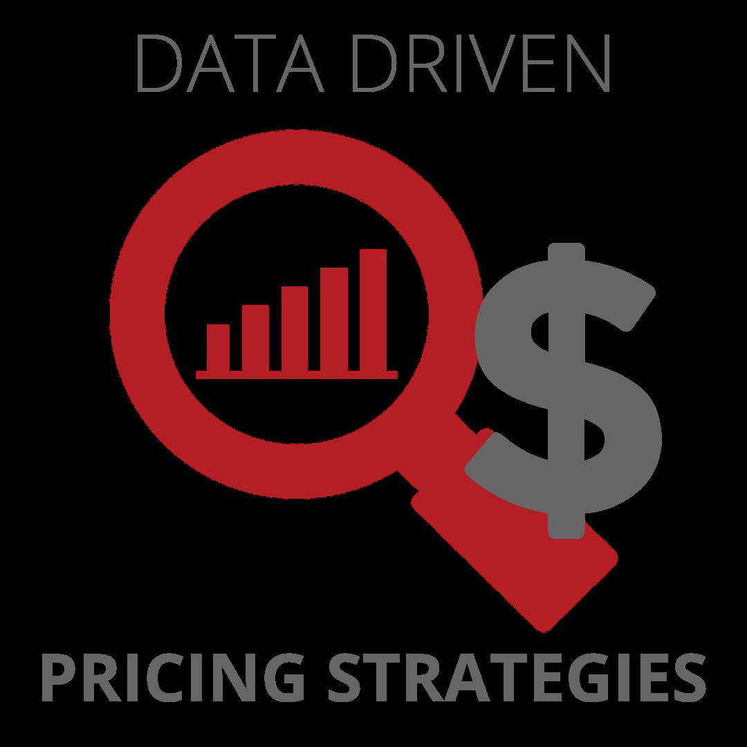 Data Driven Pricing Strategies