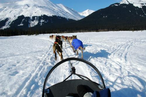 Winter Outdoor Activities To Do in Alaska