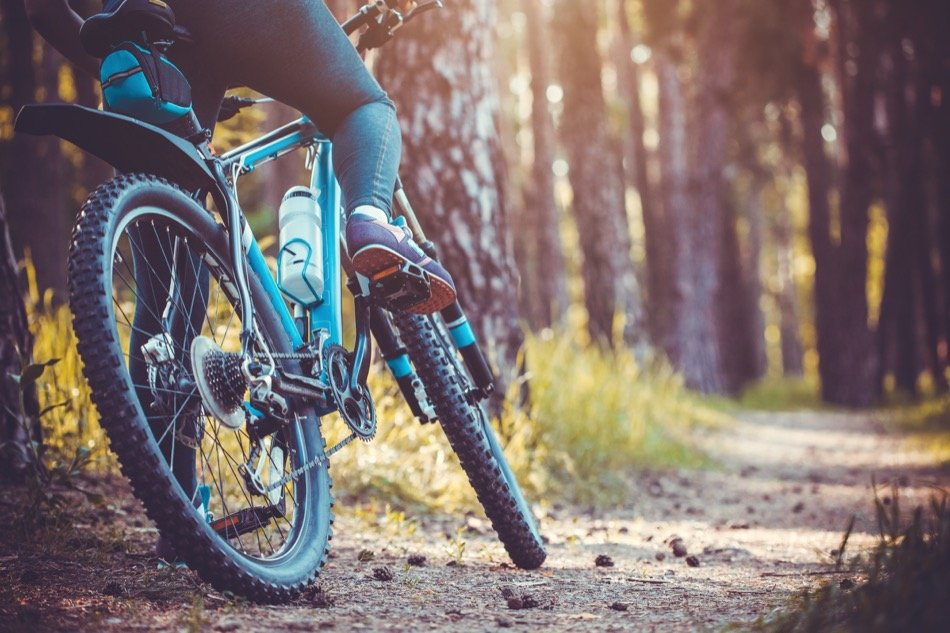 Where Are 4 Must-See Bike Trails in Alaska?