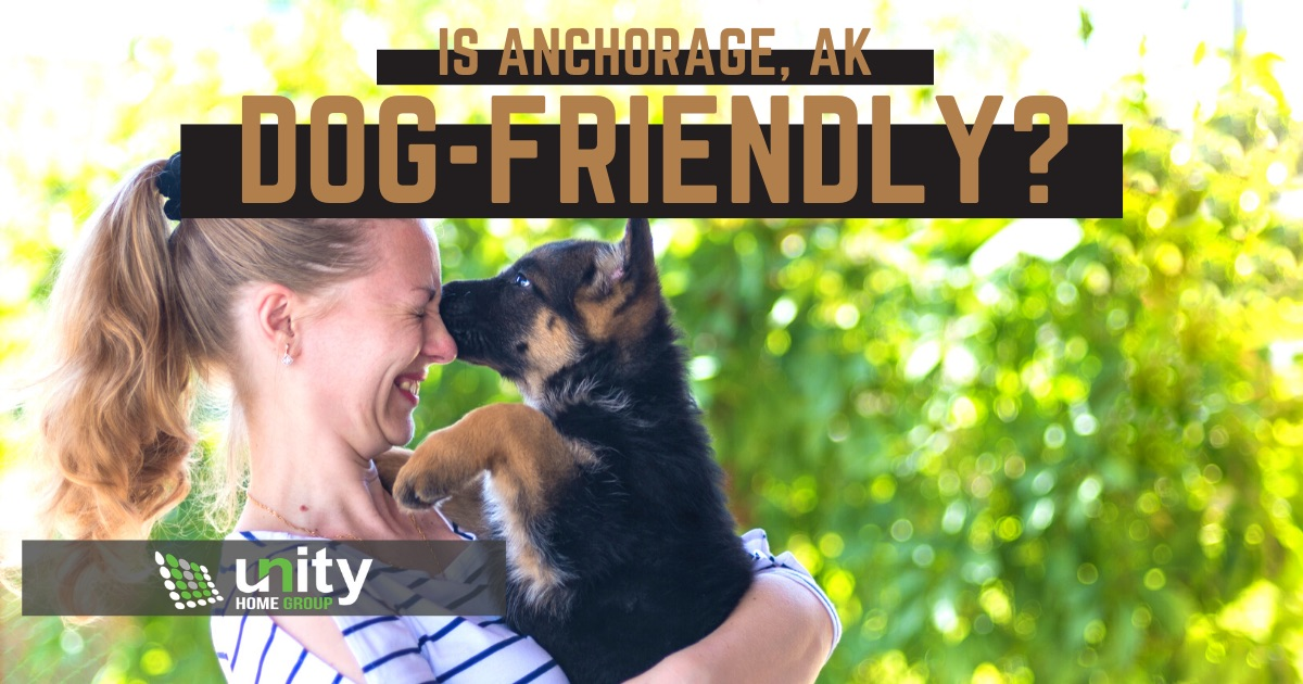 Is Anchorage Dog-Friendly?