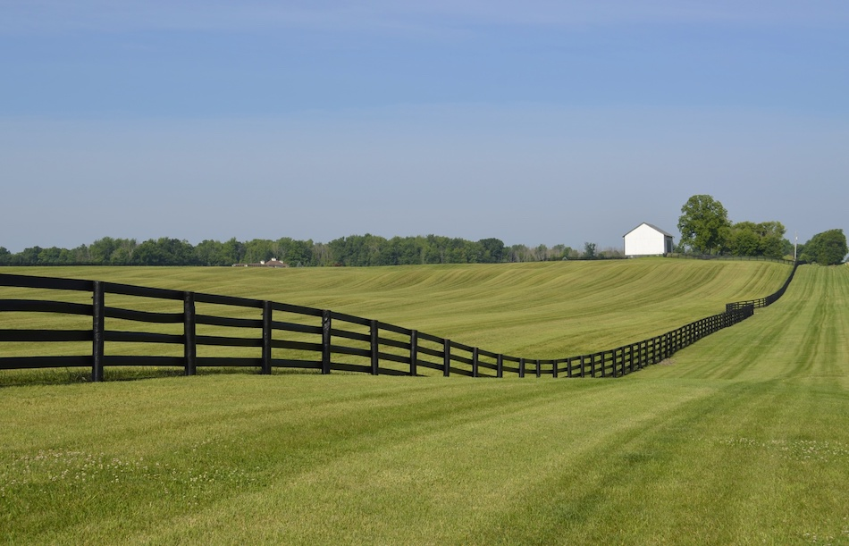 Tips for Buying a Rural Home Property