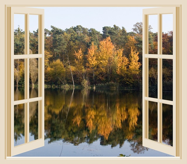 fall foliage looking out a window onto a lake