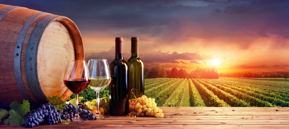 Where to Find Excellent Alaska Wineries Near Anchorage