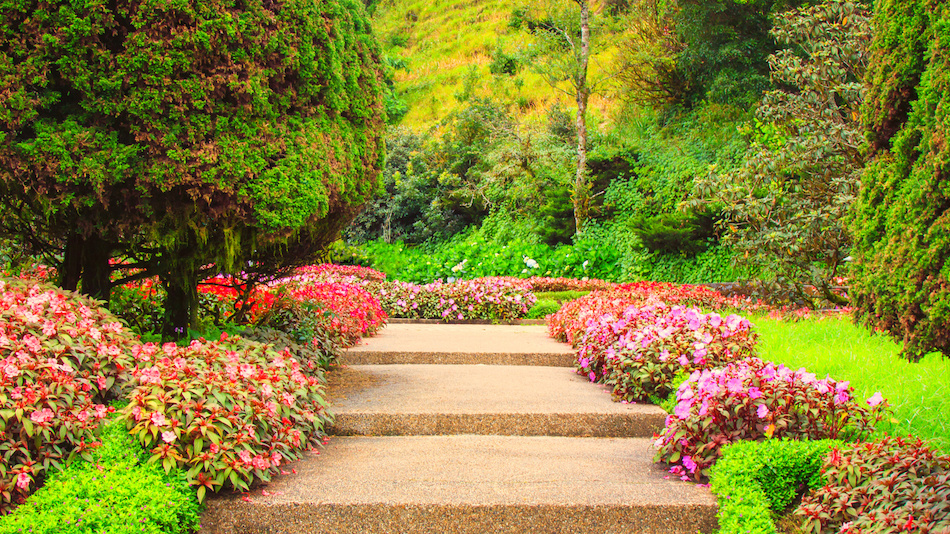 Landscaping with Shrubs and Flowers to Boost Curb Appeal