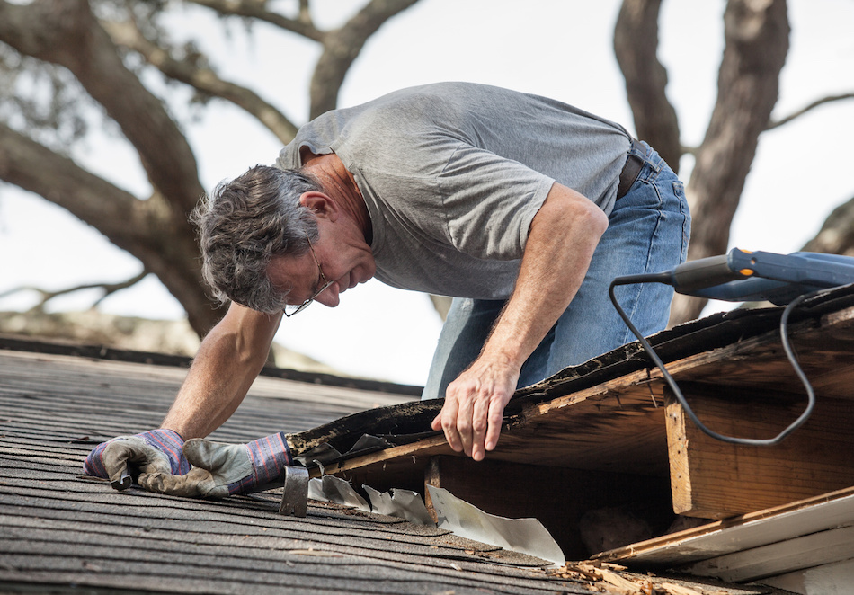 What to Do About Roof Damage
