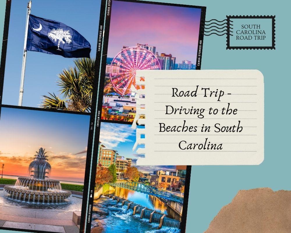 Photos taken throughout South Carolina