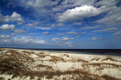 Georgia beach with sand dunes