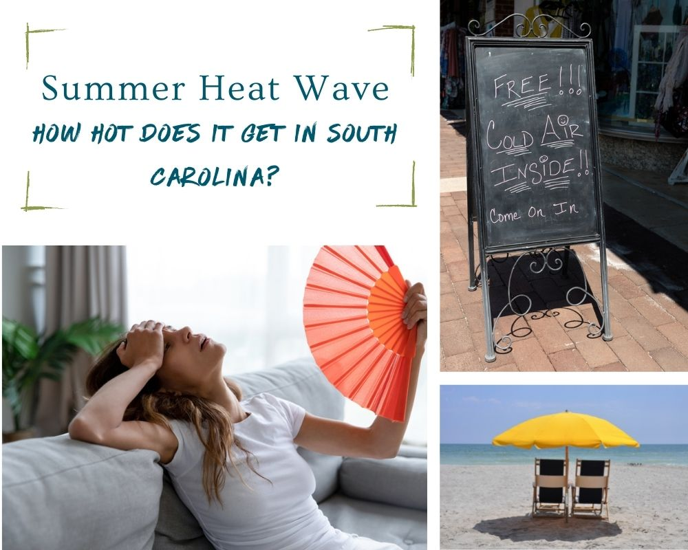 Photos of a woman with a fan, beach chairs on a beach, and a sign outside a restaurant