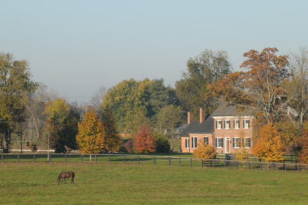 Home in Georgetown KY with views of horses in the field