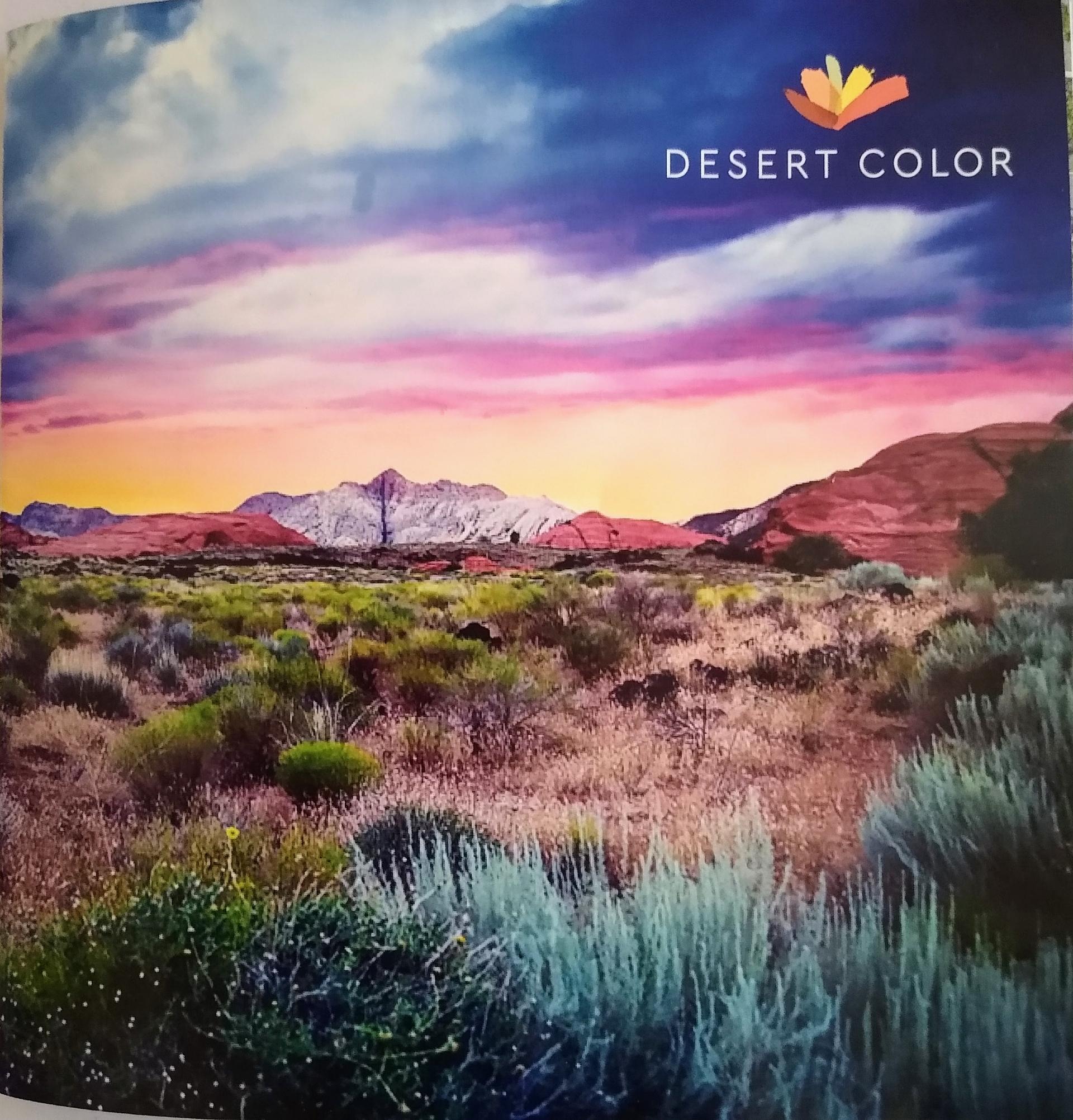 Desert Color Neighborhood