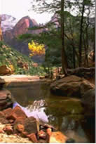 Beautiful Zion National Park just out of Springdale