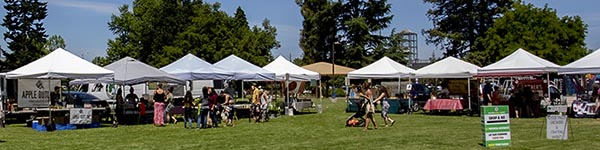 The Medford Farmers Market