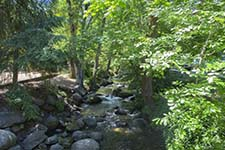 Lithia Park Stream - Ashland, Oregon