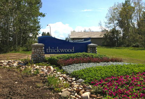 Thickwood