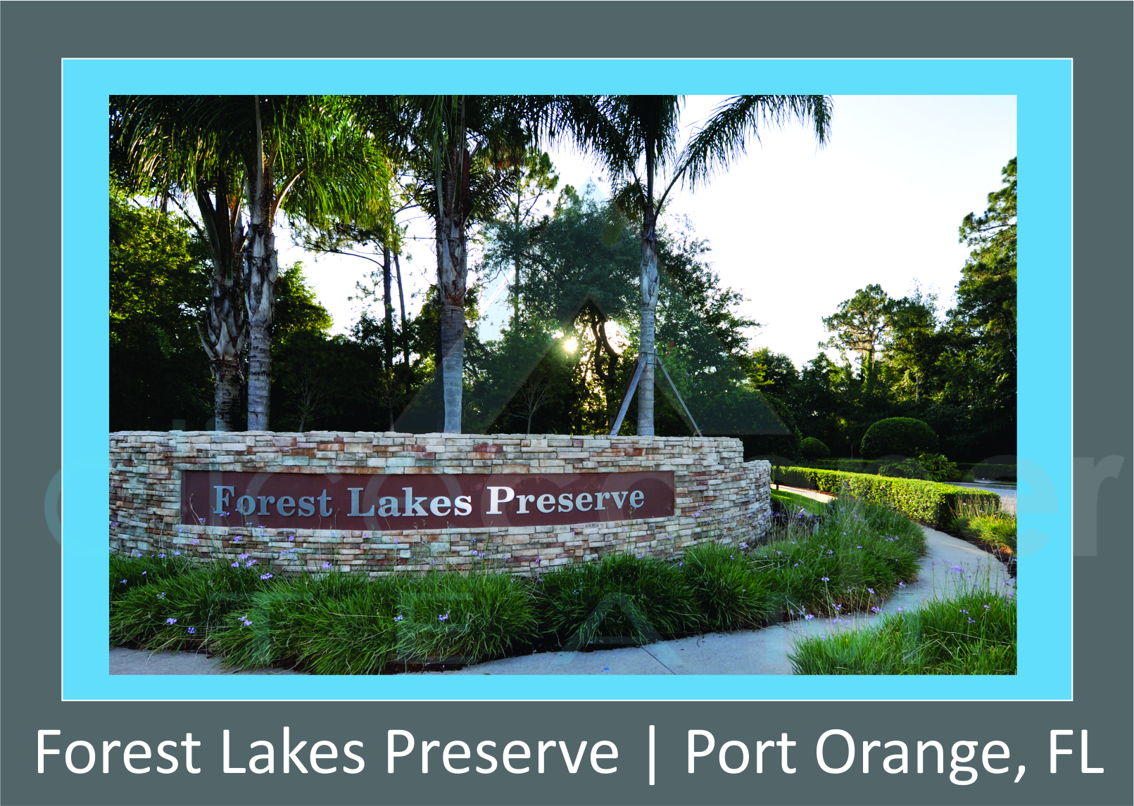 Forest Lakes Preserve