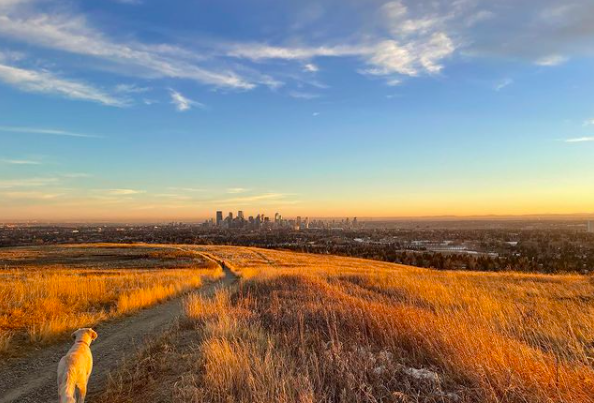Nose Hill Park in NW Calgary AB