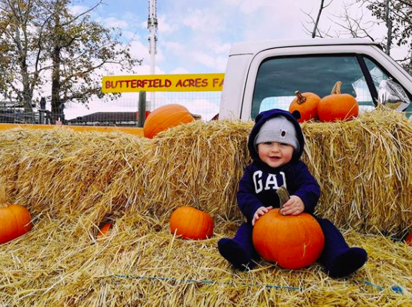Pumpkin fest at Butterfield Acres in Calgary, AB