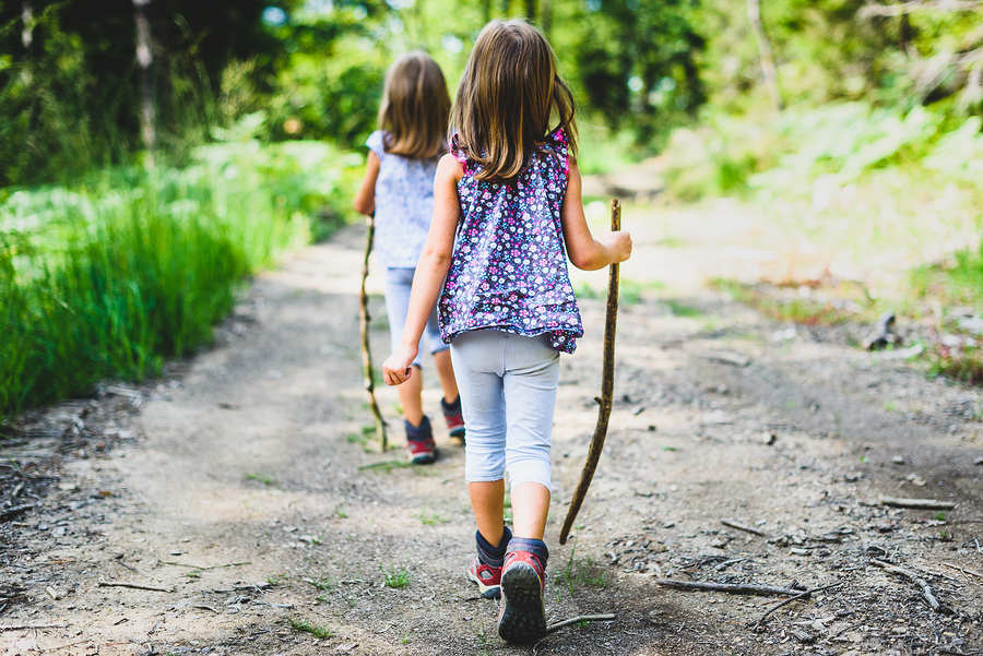 First Sunday Nature Hike this July at Bernheim Forest