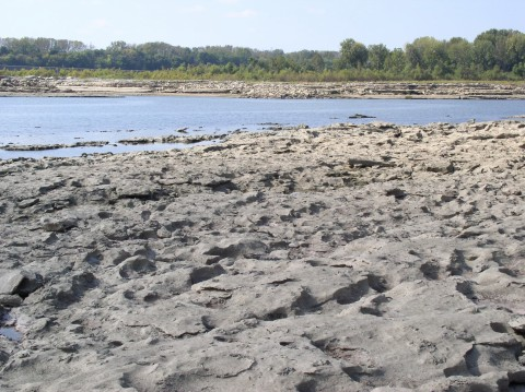 Fossil Beds at the Falls of the Ohio