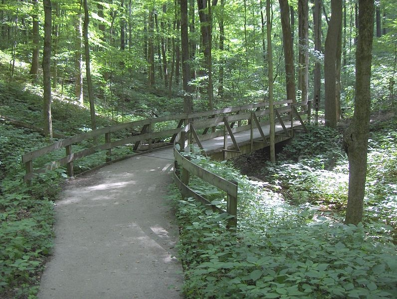 Independence Day Celebration in Jefferson Memorial Forest