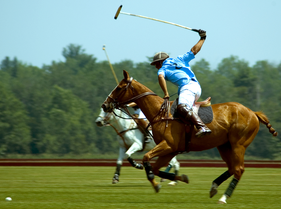 Polo at Oxmoor Farm