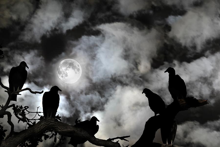 Zombie Hunting at Asylum Scream Park