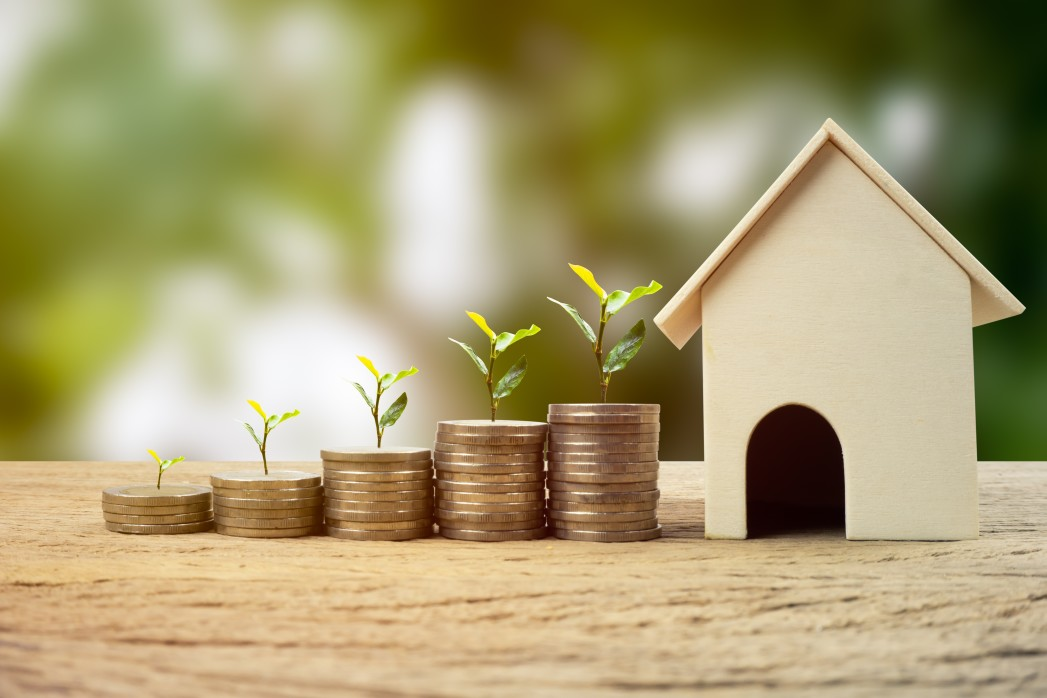 real-estate-investment-money-savings-for-buy-new-home-financial-wealth-management-concept-a-plant