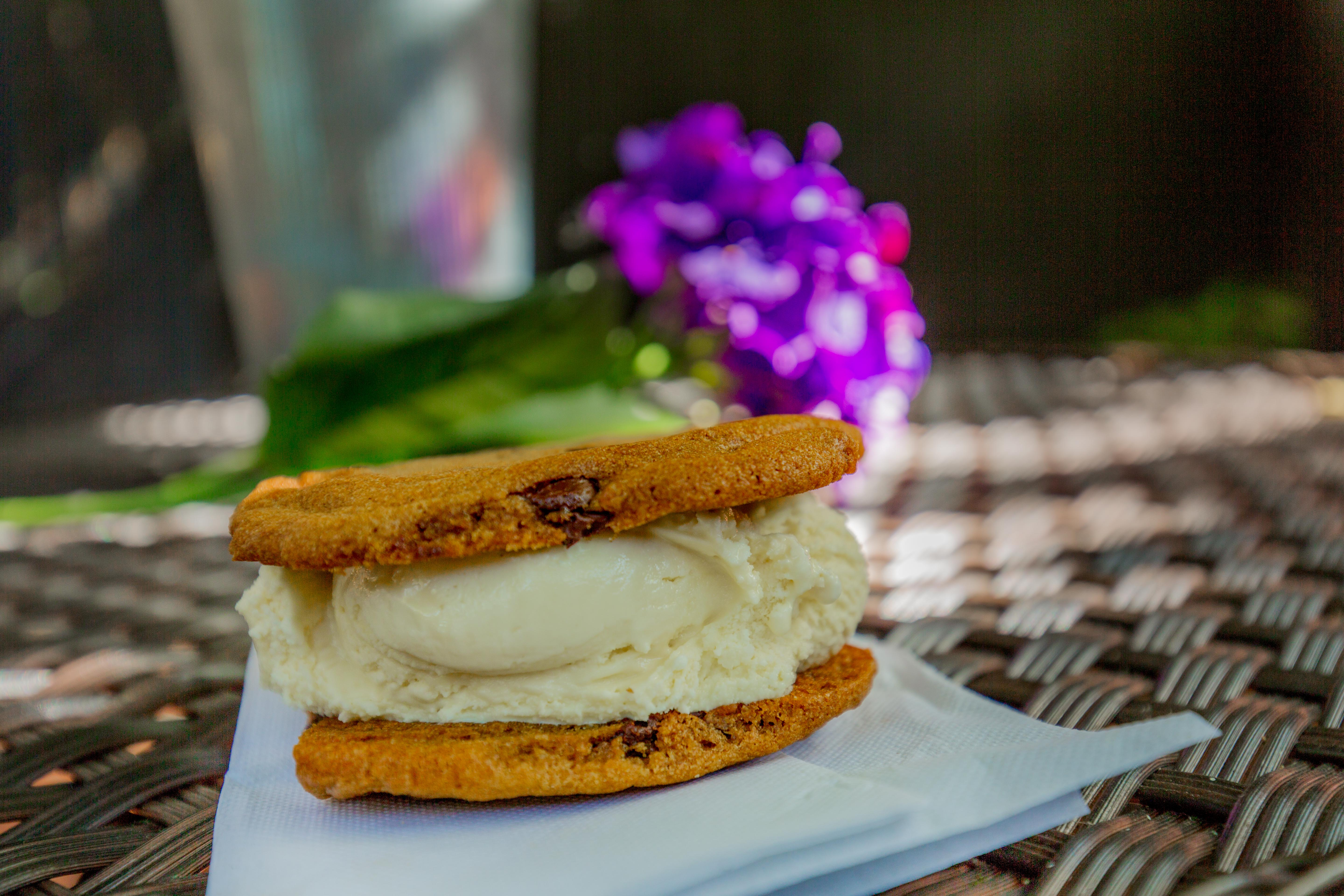 Yummy Ice Cream Sandwhich