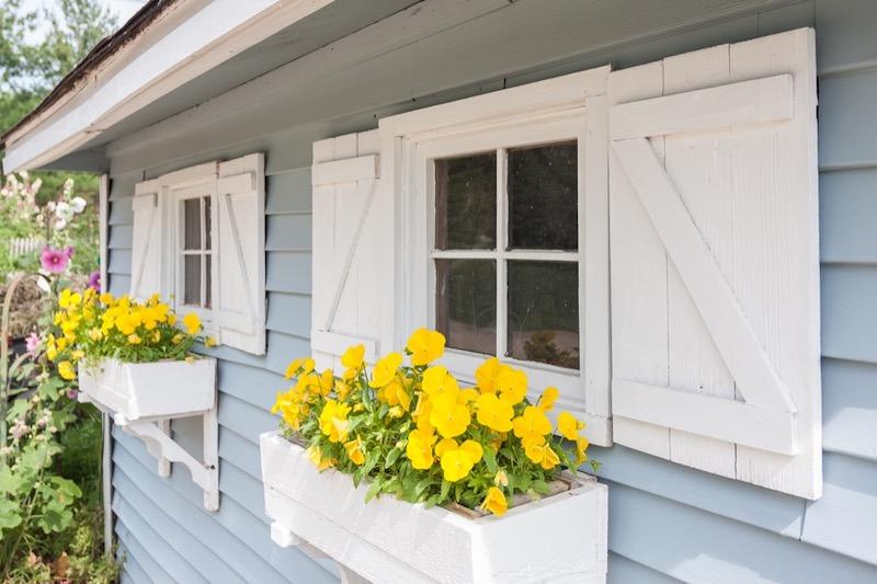 Window Maintenance in Sheds
