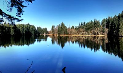 Round Lake Camas WA