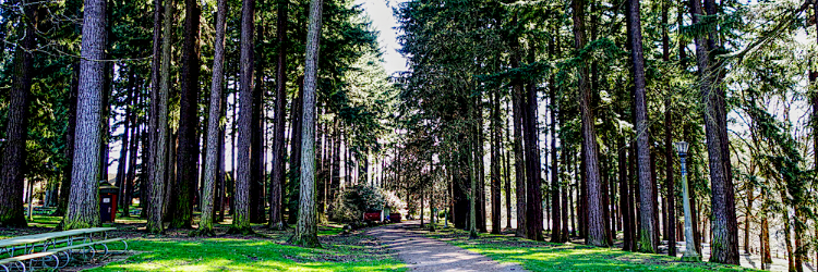 Westmoreland Park
