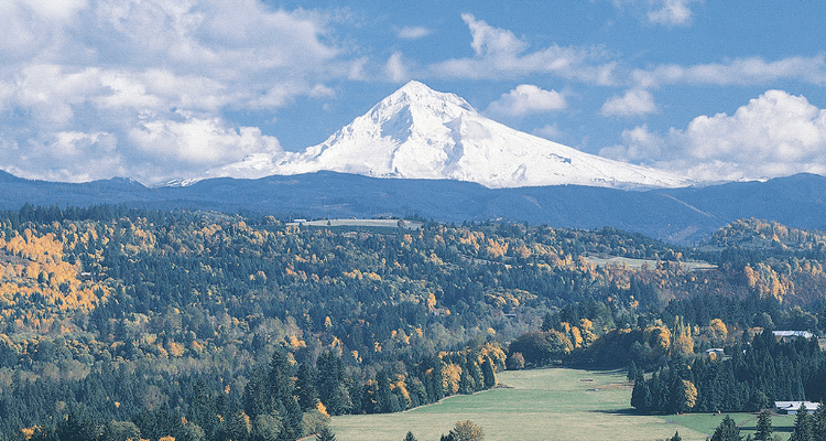 Mt. Hood in the Fall