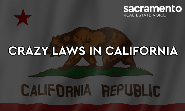 Crazy Laws in California