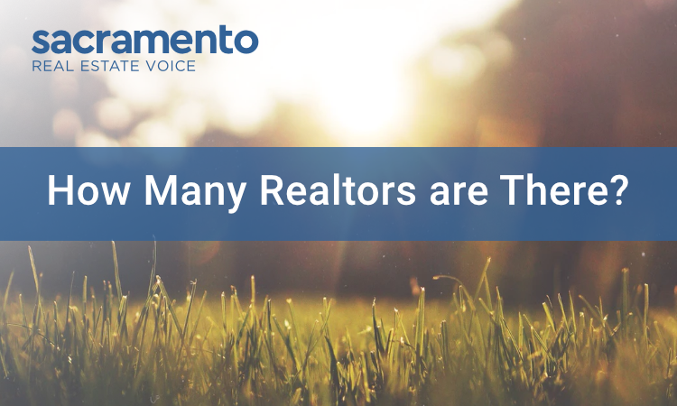 How Many Realtors Are There?