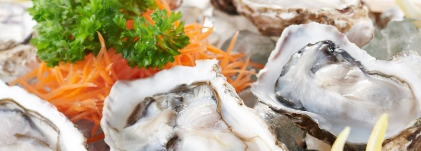 half shell oysters on a bed of ice