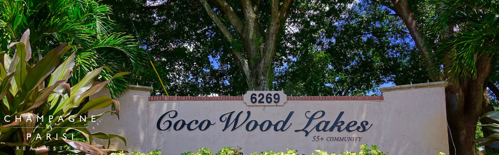 coco wood lakes homes for sale