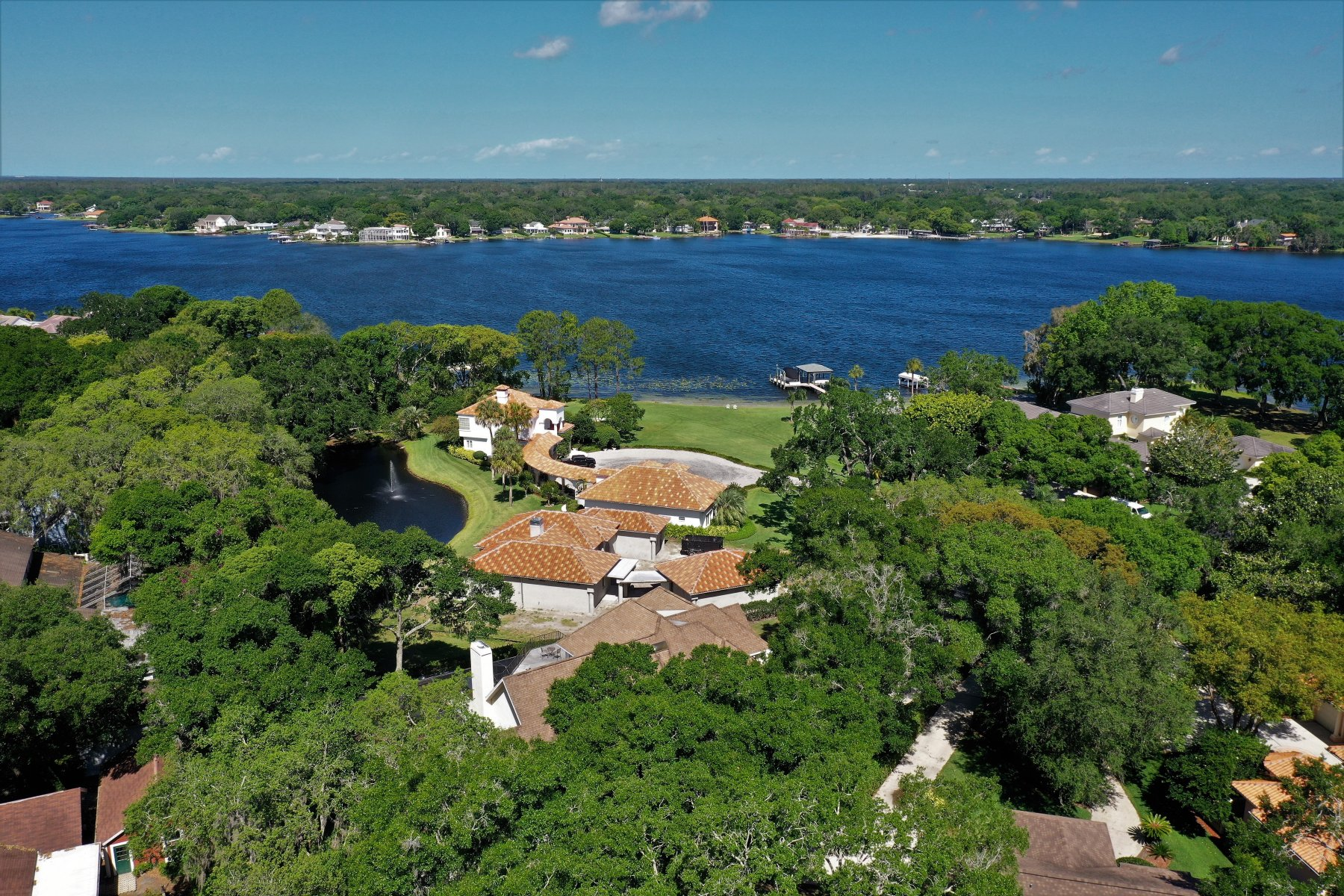 Carrollwood florida real estate