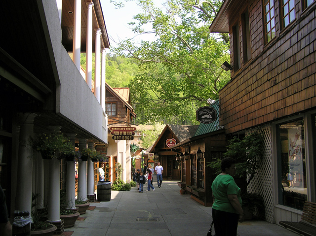 Homes for Sale in Gatlinburg Tennessee