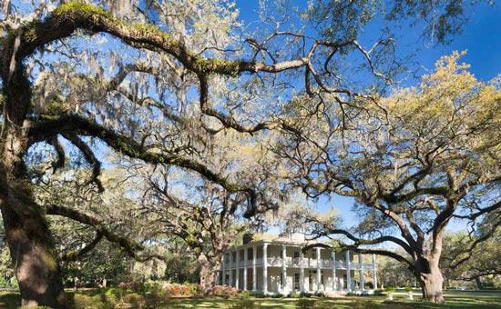 Point Washington Florida homes and real estate