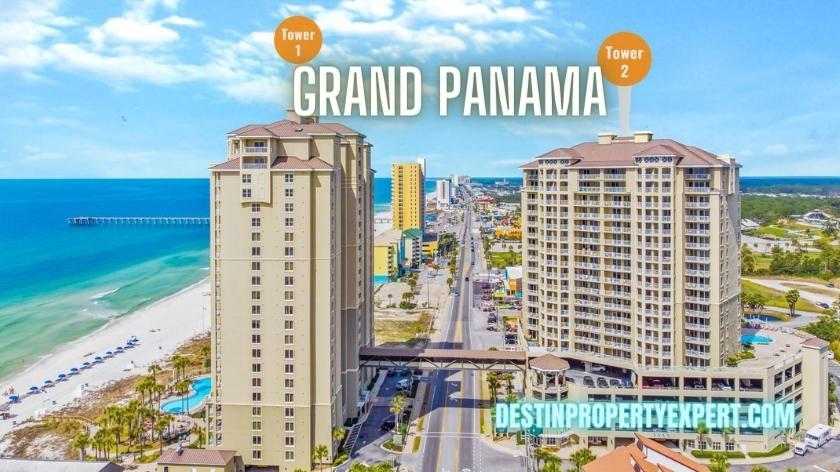 Grand Panama condors for sale