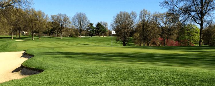 meadowink golf course murrysville pa