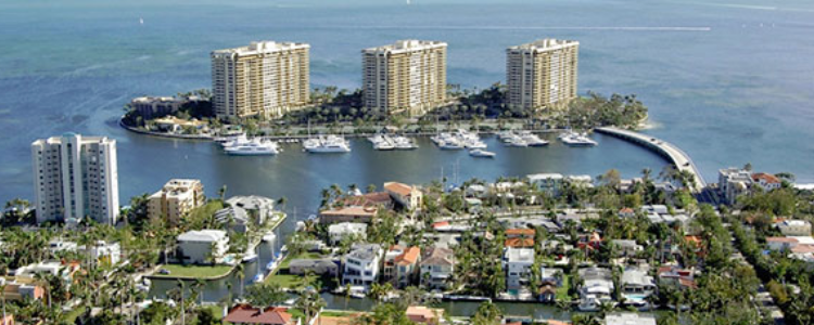 Coconut Grove Overview