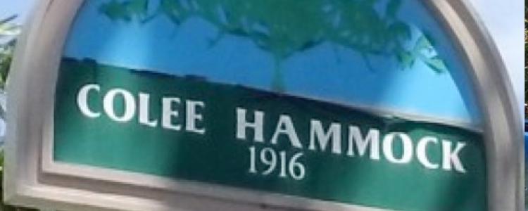 Colee Hammock