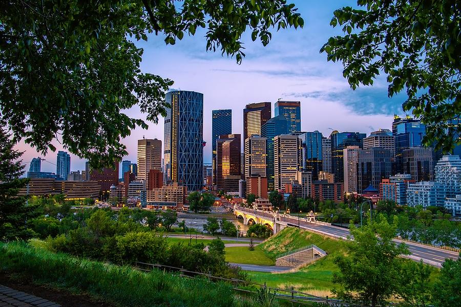 Calgary Real Estate Market