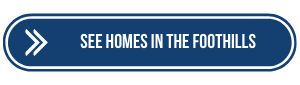 Homes for sale in the foothills area Albuquerque