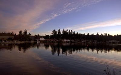 Palisades homes for sale Lake Oswego