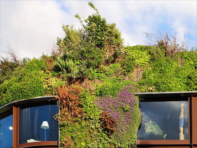 Install a green wall to attract buyers