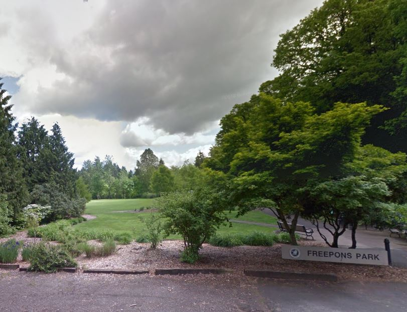 homes for sale in Hallinan Lake Oswego